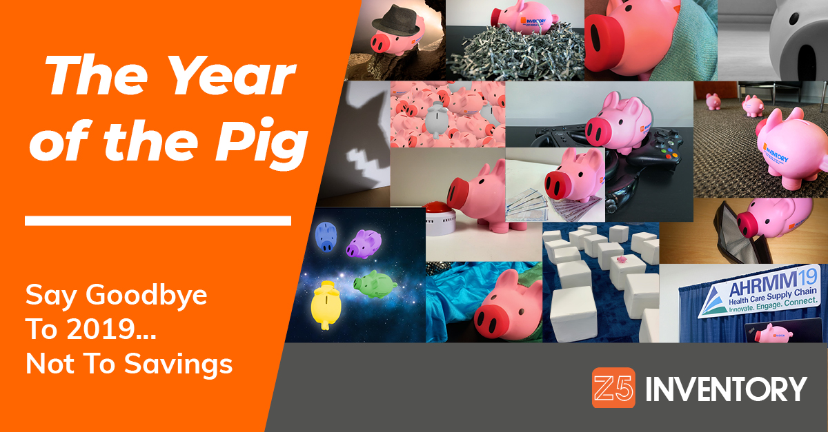 A collage of pig pictures from 2019 to celebrate the wrap-up of the Year of the Pig.